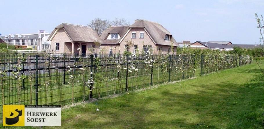 dubbelstaafmat groeiwand voor klimplanten - hekwerk soest b.v.