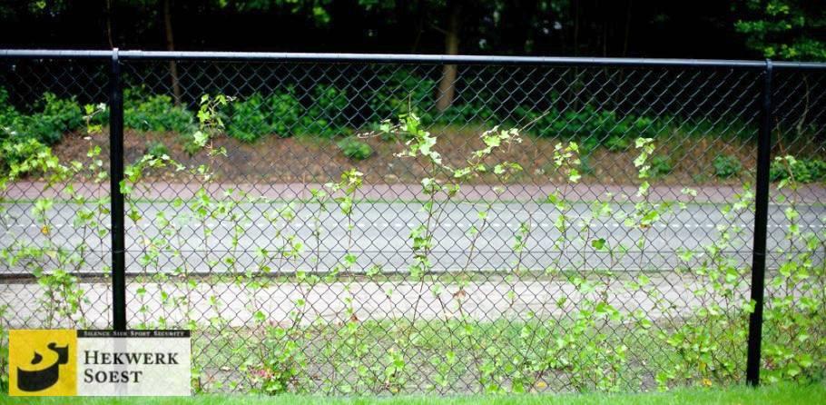 gaashekwerk als groeiwand voor klimplanten - hekwerk soest b.v.