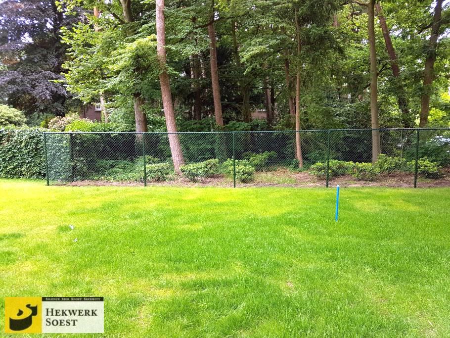 gaashekwerk langs gras